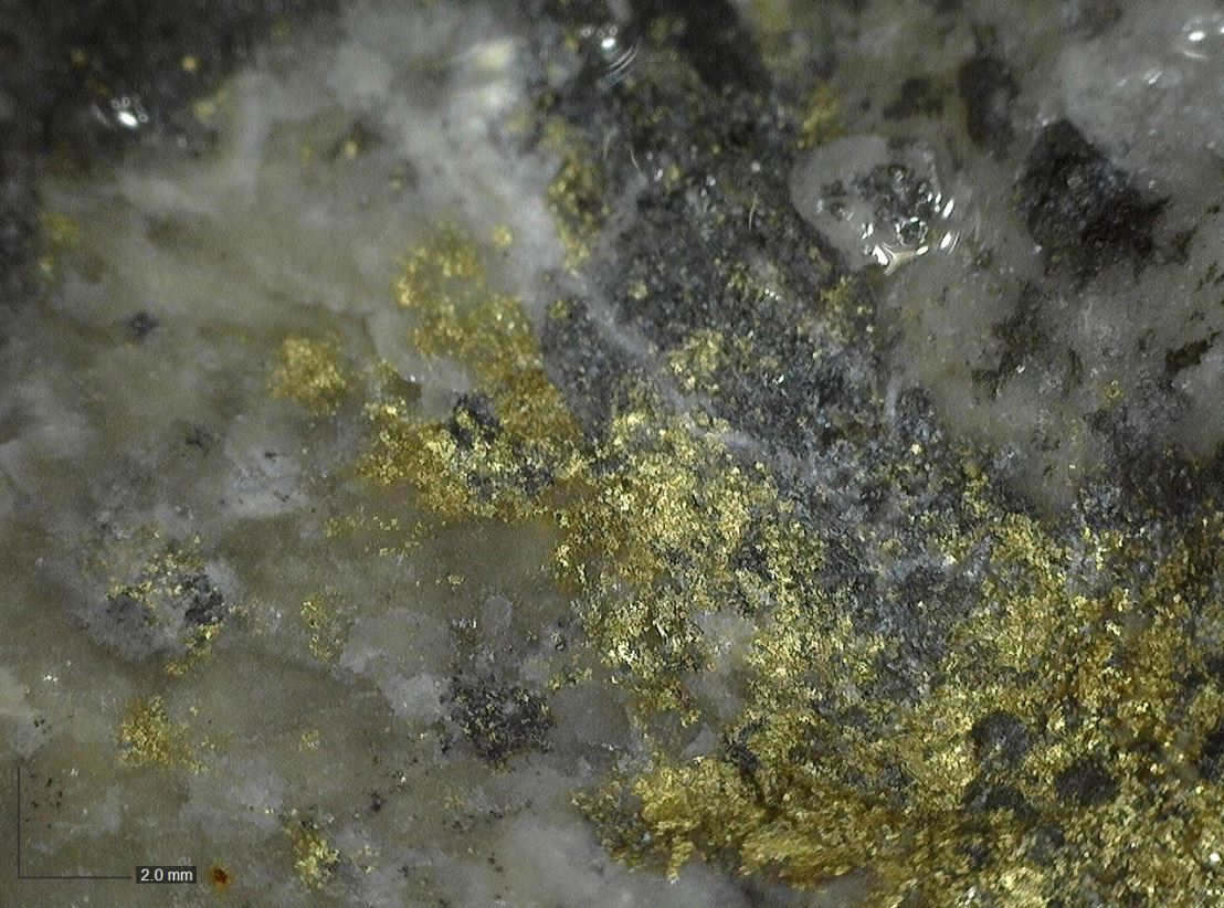 Sun Summit Commences Drill Program at Buck; Identifies Visible Gold in Discovery Hole BK20-012
